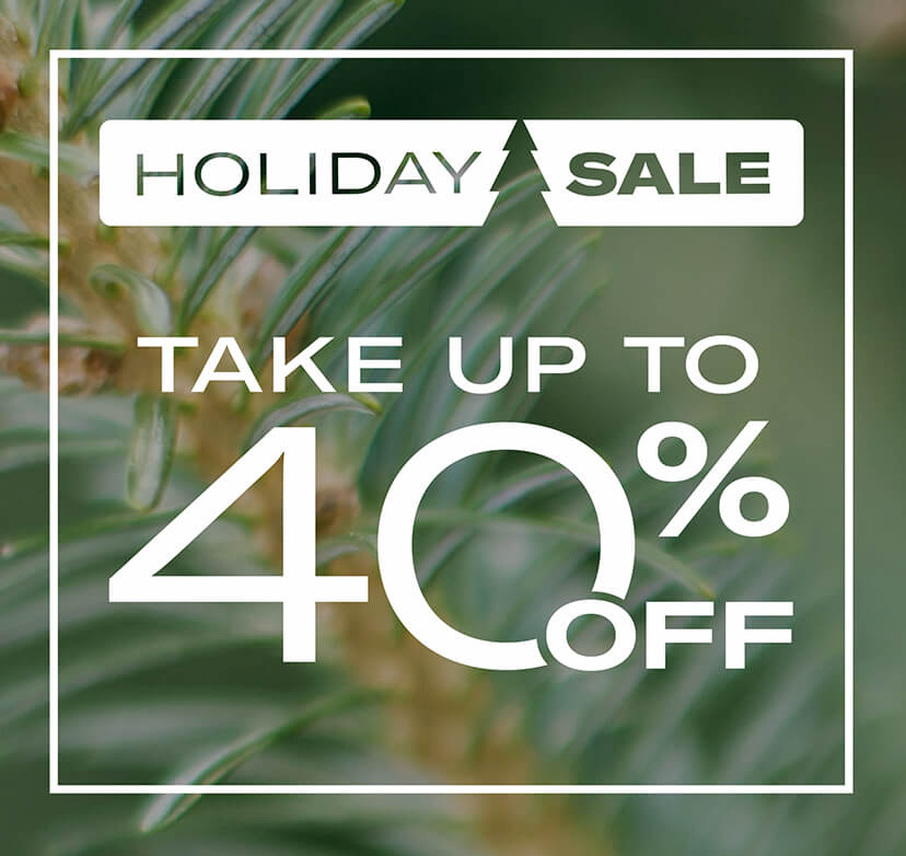 Holiday sale - take up to 40% off